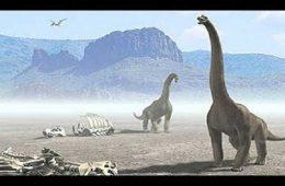 آیا فسیلهای به تازگی کشف شده متعلق به بزرگترین دایناسور جهان است؟ – فناوری
