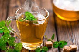 بهترین گیاهان دارویی برای سرکوب اشتها-سلامت