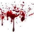 توضیح درباره علت قتل پسر ۱۱ ساله در رباط کریم – حوادث