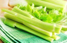 مواد غذایی کالری منفی: واقعی یا ساختگی؟-سلامت