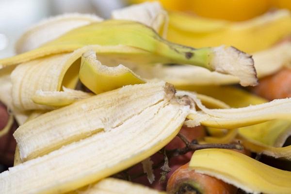 بخشهایی از مواد غذایی که نباید دور ریخته شوند