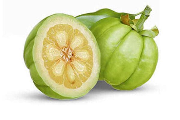 آشنایی با گیاه گارسینیا کامبوجیا و خواص آن