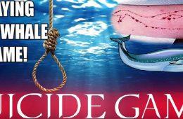 نخستین قربانیان نهنگ آبی در ایران
