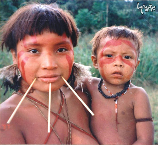 حقایق عجیب و باورنکردنی درباره جنگل آمازون