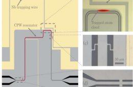 جفتشدگی کوانتومی؛ گامی در جهت ساخت پردازندههای کوانتومی – فناوری