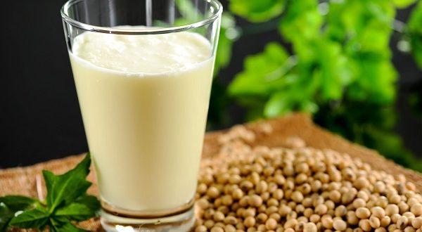 یک جایگزین گیاهی برای شیر گاو-سلامت