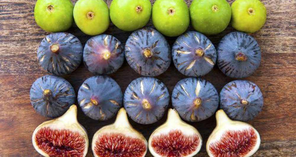 ارزش غذایی انجیر،خواص انجیر،مصارف درمانی انجیر