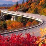تصاویر زیبا از جاده های دیدنی دنیا