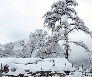 پیش بینیسازمان هواشناسی امروز (برف و بارانبرای کشور)