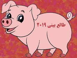 سال خوک، چگونه سالی است؟!