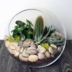 ساخت تراریوم/ آموزش ساختتراریوم یا باغ شیشه ایی در خانه
