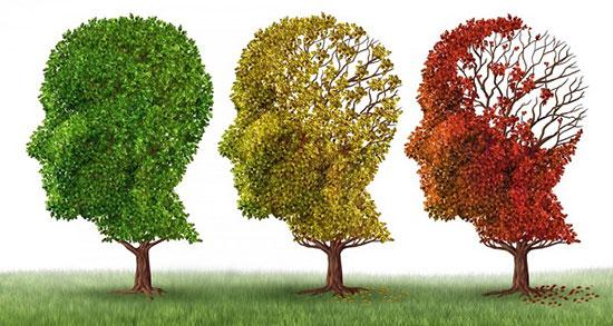 در ادامه با روشهای پیشگیری از آلزایمر آشنا شوید