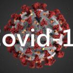ویروس بیماری کرونا کووید ۱۹