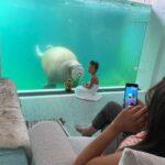 هتل زیرآبی در باغ وحش