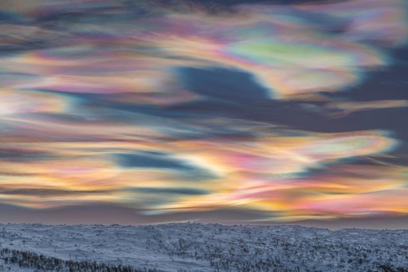 «نقاشی کردن آسمان» اثر: توماس كاست
