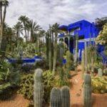 باغ ماژورل مراکش، از زیباترین باغ های جهان