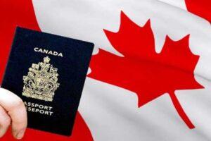پیکاپ پاسپورت