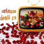 شب یلدا 99/برنامه های تلویزیون در شب یلدای 99