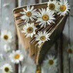 ۷ درس ارزشمند از بدبختی ومصیبت