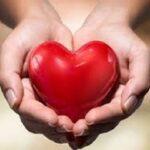 سلامت قلب/14 غذا سالم برای قلب مفید است