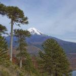 کشور شیلی/ 5 پارک ملی زیبا در شیلی