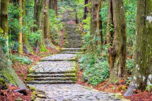پارک ملی یوشینو-کومانو